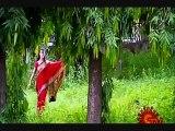 Unnai Paartha Pinbu Naan ,  Tamil video songs ,  eascinemas