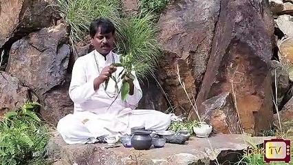 ನಿಮ್ಮ ಹಿತ್ತಲ ಸಂಜೀವಿನಿ..!