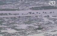 Japon: Le typhon Hagibis déferle sur le pays et fait au moins 35 morts