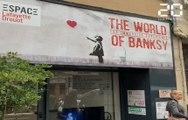 Banksy: Entre mystères et pochoirs, l'artiste se dévoile dans son exposition parisienne