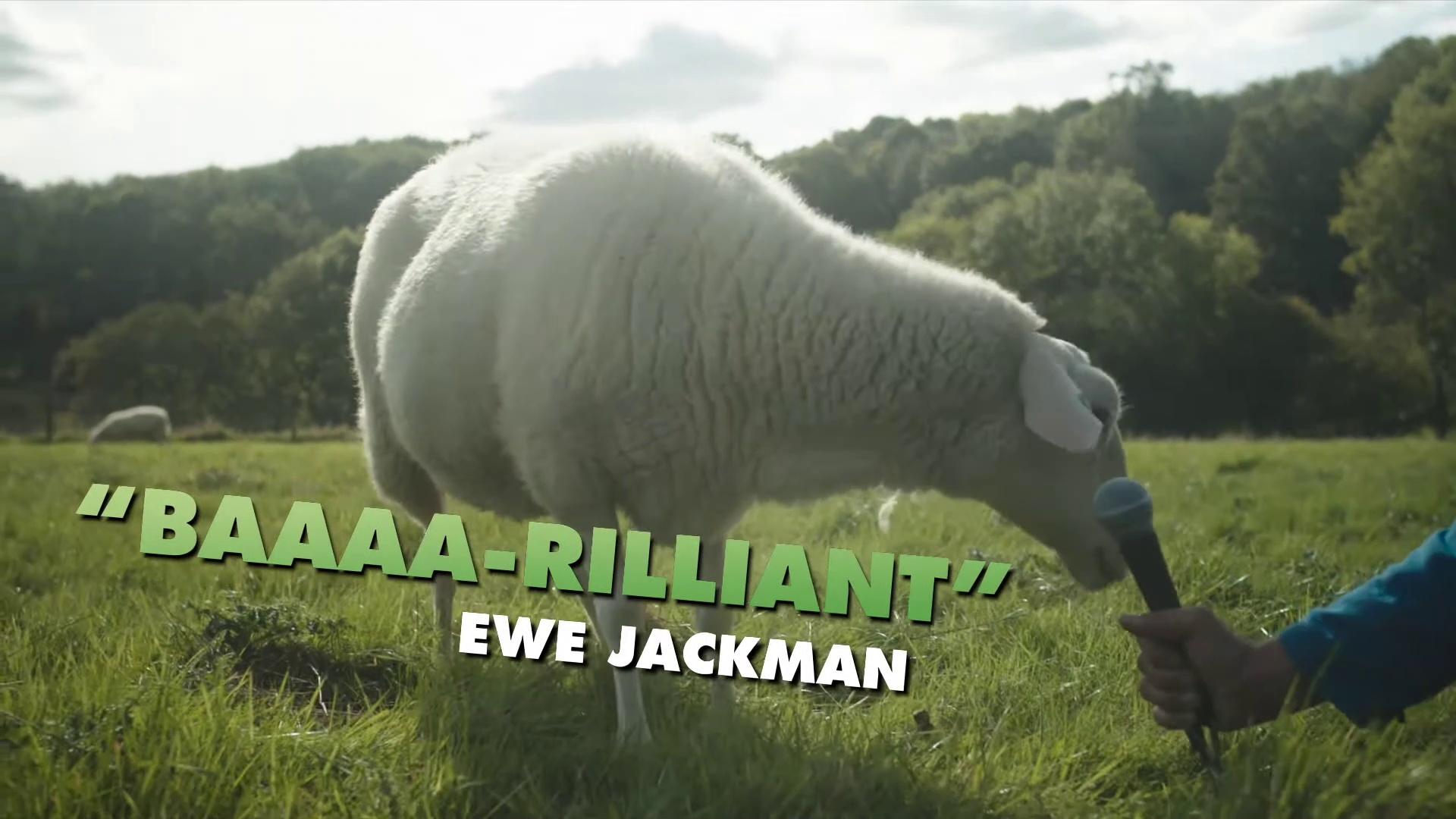 A SHAUN THE SHEEP MOVIE FARMAGEDDON movie – Sheep Premiere