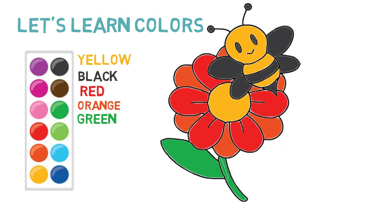 Bee and flower – draw and color – Coloring Page – Kids Video
