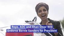 Bernie Sanders Gets New Endorsements
