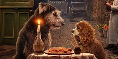 """Lady and the Tramp"" - Disney+'s All-New Live-Action Trailer"