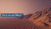 Un ancien scientifique de la Nasa affirme avoir trouvé de la vie sur Mars il y a 40 ans