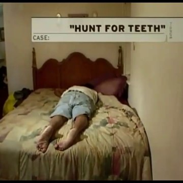 Hunt for Teeth / Coyote Blue