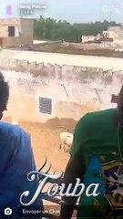 Magal 2019: Wally Seck offre des dizaines de boeufs  à Touba