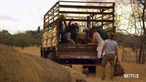 Un safari pour Noël Film