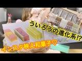 【名古屋土産】視聴者さんがくれたウイロバーとささらがた食べてみた♡