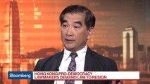 Hong Kong Pro-Establishment Lawmaker Chung on Protests, Lam
