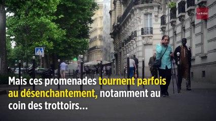 Alain Souchon veut quitter Paris, devenue « sale et violente »