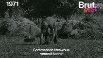 """En 1971, quand la télé française découvrait la tendance des produits """"naturels"""""""