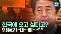 [엠빅뉴스] 매출 1/30 토막 난 일본 수출 기업, 생산공장 한국으로 옮기고 싶다고?