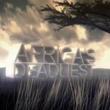 AFRICA'S DEADLIEST  - Season 1 Episode 2 - Predator Swarm