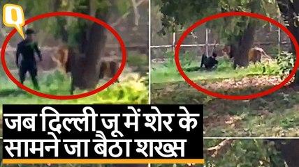 Delhi Zoo में शेर के सामने जा बैठा शख्स, कर्मचारियों ने बचाया | Quint Hindi