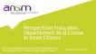 Perspectives françaises - Audition du département de la Creuse et d'Intsel Chimos