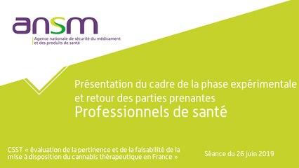 Présentation du cadre de la phase expérimentale et retour des parties prenantes Professionnels de santé