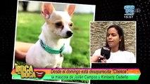 VIDEO | 'Campanita' fue estafada al tratar de recuperar a su mascota