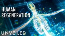 What If Humans Could Regenerate?   Unveiled