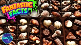 What You (Probably) Didn't Know about Chocolate!