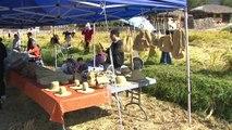 가을 내려앚은 아산 외암마을의 전통축제 / YTN
