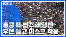'백색테러' 공포에도 홍콩 또 민주화 행진 / YTN