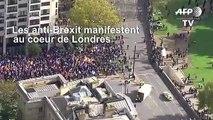 Pendant le débat au Parlement, défilé anti-Brexit à Londres
