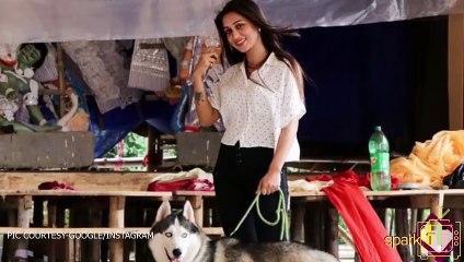 সাদা শার্ট পরে স্টাইল করেছেন মিমি চক্রবর্তী. আপনিও শিখে নিন কিভাবে মিমির মতো সাদা শার্ট দিয়ে বাজিমাত করবেন.