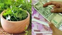 Dhanteras 2019 : धनतेरस पर रुपए 5 की ये चीज बदल देगी आपकी किस्मत | Dhanteras Kismat Upay | Boldsky