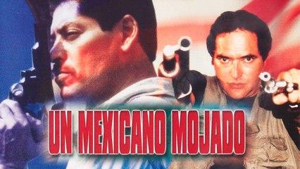 Un mexicano mojado