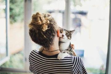 Verhaltensweisen, die beweisen, dass deine Katze dich liebt