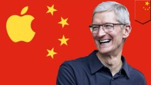 Tim Cook becomes chairman at Chinese business school