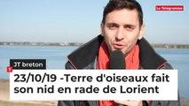 JT Breton du mercredi 23 octobre 2019. Terre d'oiseaux fait son nid en rade de Lorient