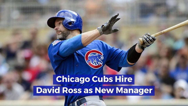 Chicago Cubs Hire David Ross as New Manager