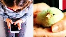 Wali Kota Bandung cegah kecanduan gadget dengan bagikan anak ayam pada anak - TomoNews