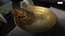 Grab a bite of Piranha ramen in Tokyo's Ninja Cafe!