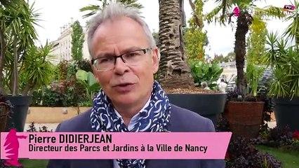 L'édition 2019 du jardin éphémère de Nancy