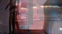 Eternal youth   Mind uploading   Time travel   Fine Art   Performance Art   Conceptual art   Music