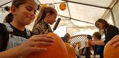 """Atelier """"Citrouilles d'Halloween"""" à la cueillette Paradis Vogel de Burnhaupt-le-Haut"""