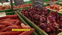 Lubrizol : retour au marché pour les producteurs