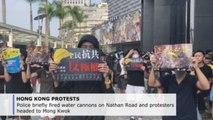 Hong Kong police nip unauthorized rally in the bud