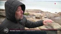Morbihan : grandes marées pour le bonheur des surfeurs