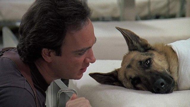 K-9 Movie (1989)  Jim Belushi, Mel Harris, Kevin Tighe