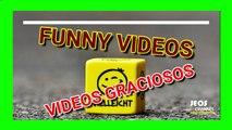 Videos chistosos (Nuevos videos, Videos nuevos, Videos graciosos, Videos de risa, Videos de humor, Videos de caidas, Videos virales, Videos mas vistos, Videos funny, Buenos videos, Video chistoso, Los mejores videos)