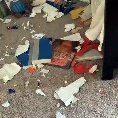 Ce chien a juste ravagé la maison!!!