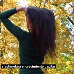 Mascarilla de chía para estimular el crecimiento del cabello