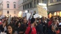 Solidaritätsdemo für Chile in Wien