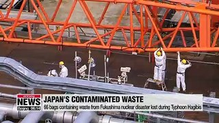66 bags containing waste from Fukushima nuclear disaster lost during Typhoon Hagibis