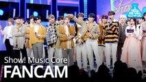 [예능연구소 직캠] Home - Seventeen, 세븐틴 - Home No.1 encore ver. @Show Music core 20190202