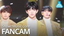 [예능연구소 직캠] SEVENTEEN - Home (JOSHUA), 세븐틴 - Home (조슈아) @Show Music core 20190202